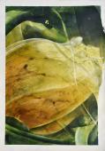 Vicenç Viaplana, 'Botànica Incidental 1' 2017 acrílico sobre papel 100 x 70 cm